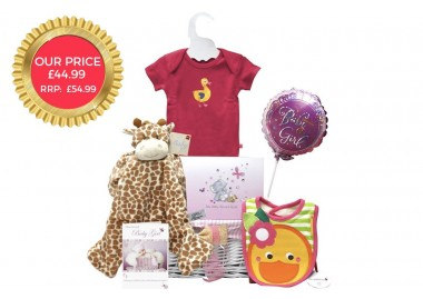 Baby Arrival Girl Gift Basket