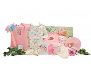 Starter Baby Girl Gift Box