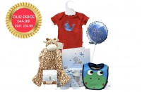 Baby Arrival Boy Gift Basket