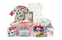 Natures Purest Baby Girl Gift Basket