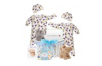 Twin Playtime Boys Gift Basket