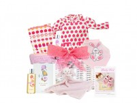 Baby Love Girl Gift Basket