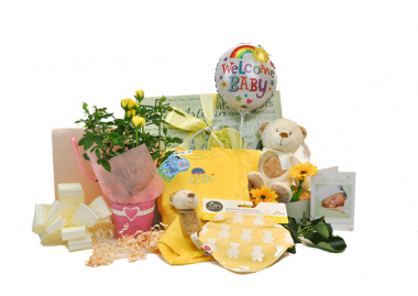 Baby Born Gift Box With Flowers